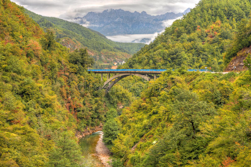 Garganta de Tara do rio, Montenegro imagens de stock royalty free