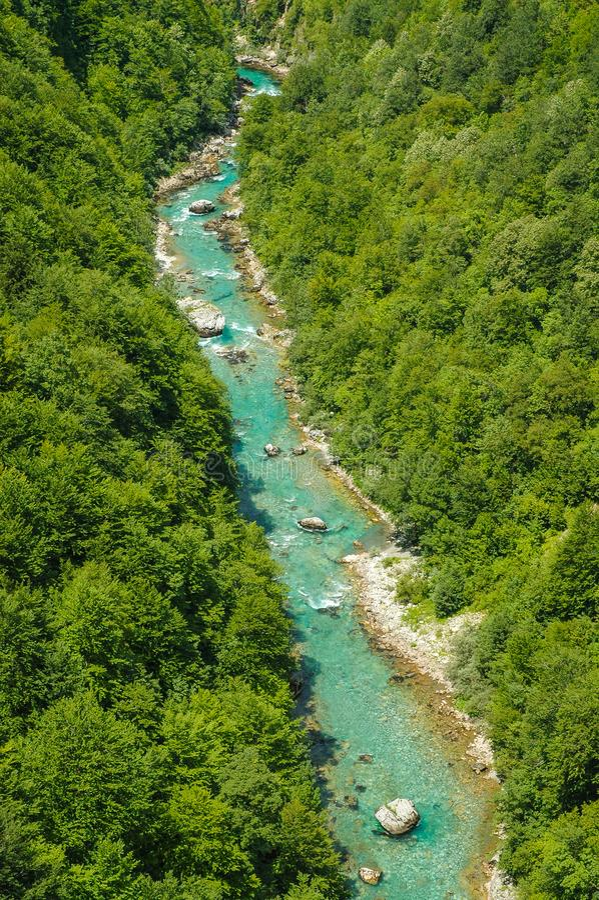Garganta de Tara, Montenegro fotografia de stock