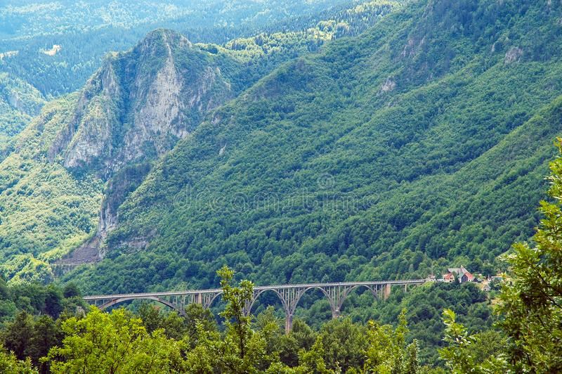 Garganta de Tara, Montenegro imagens de stock