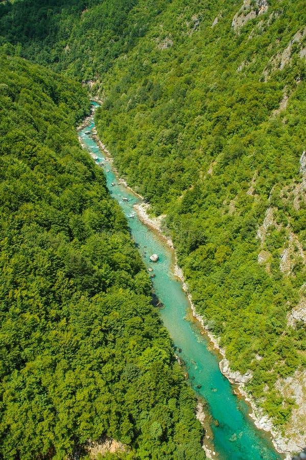 Garganta de Tara, Montenegro fotos de stock