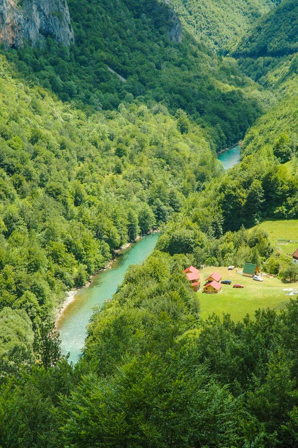 Garganta de Tara, Montenegro imagem de stock