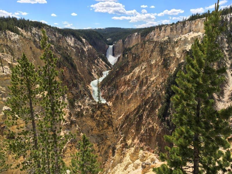 Garganta de Yellowstone fotos de stock royalty free