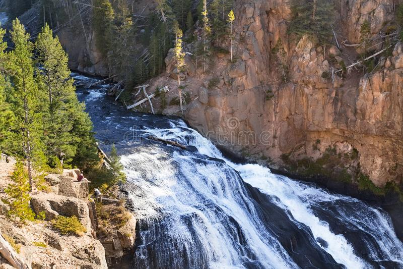 Garganta de Yellowstone, rio, paisagem da cachoeira fotografia de stock