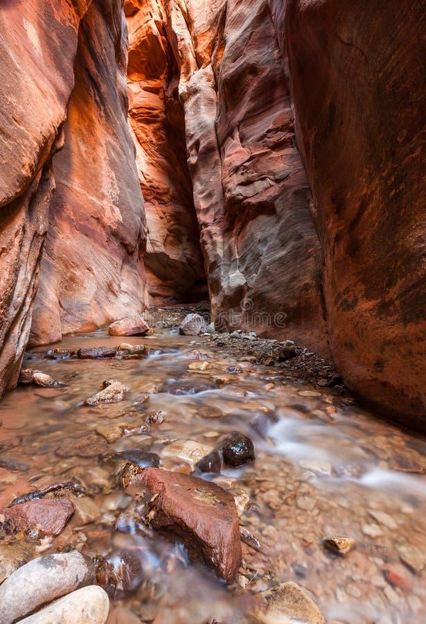 Garganta do entalhe da angra de Kanarra no parque nacional de Zion, Utá fotos de stock