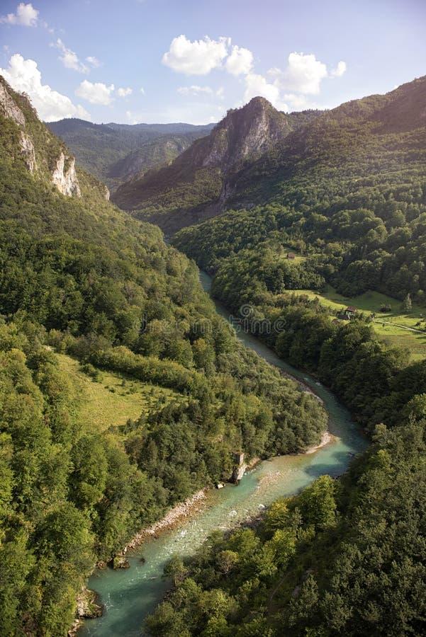 Garganta do rio de Tara, Montenegro foto de stock royalty free