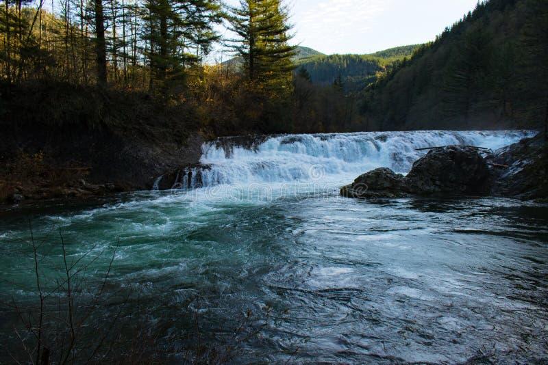 Garganta Duncan Falls, Washington del río Columbia imagen de archivo