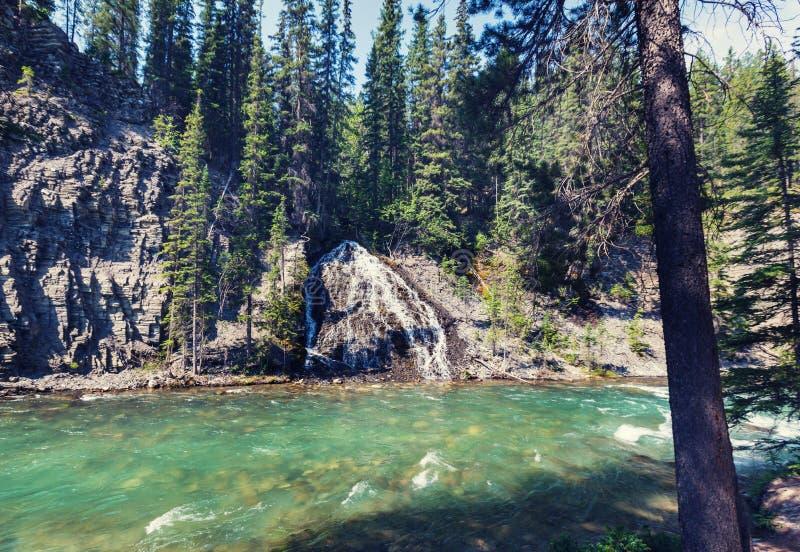 Garganta em Banff NP foto de stock royalty free