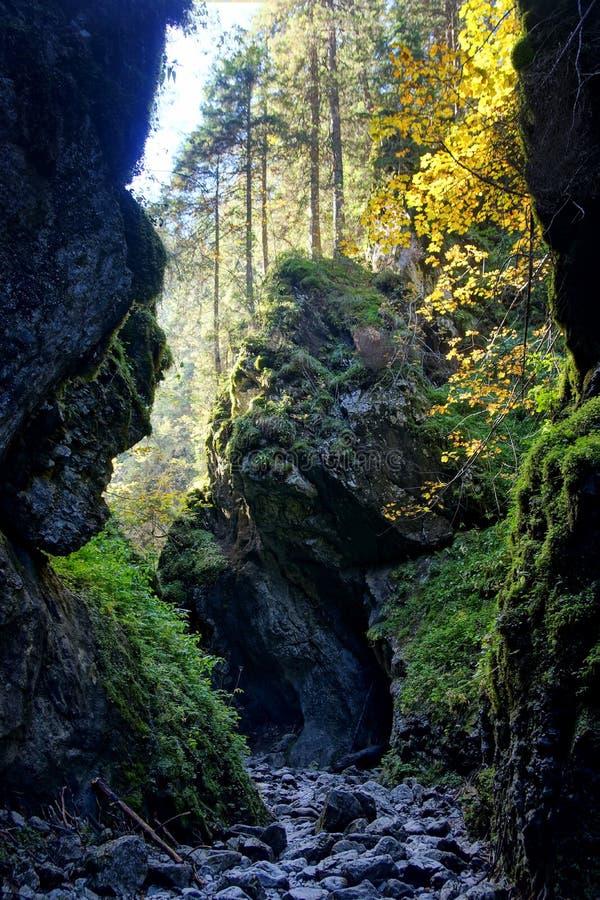 Garganta en las montañas de Tatras, Polonia de Cracovia imagen de archivo