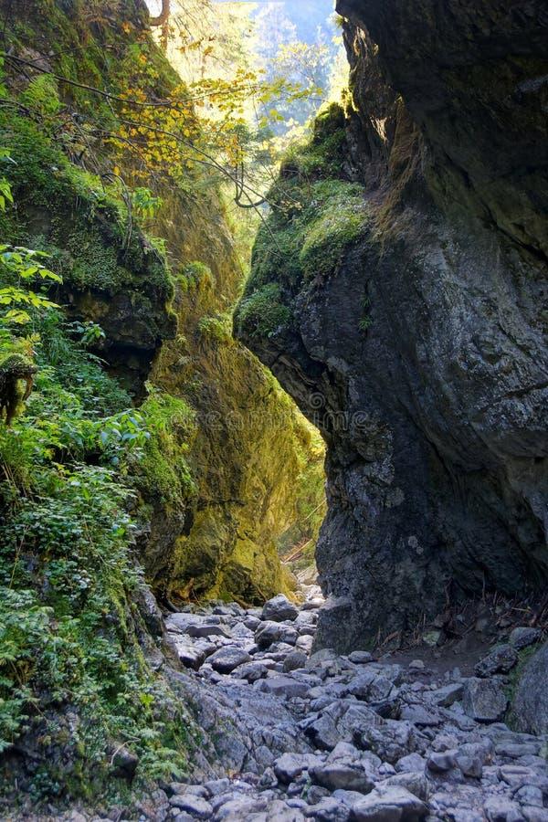 Garganta en las montañas de Tatras, Polonia de Cracovia imagen de archivo libre de regalías