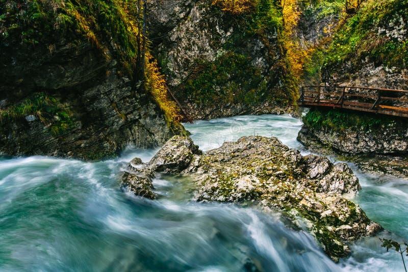 A garganta famosa com as pancadinhas de madeira, sangradas, Triglav do desfiladeiro de Vintgar, Eslovênia, Europa fotos de stock