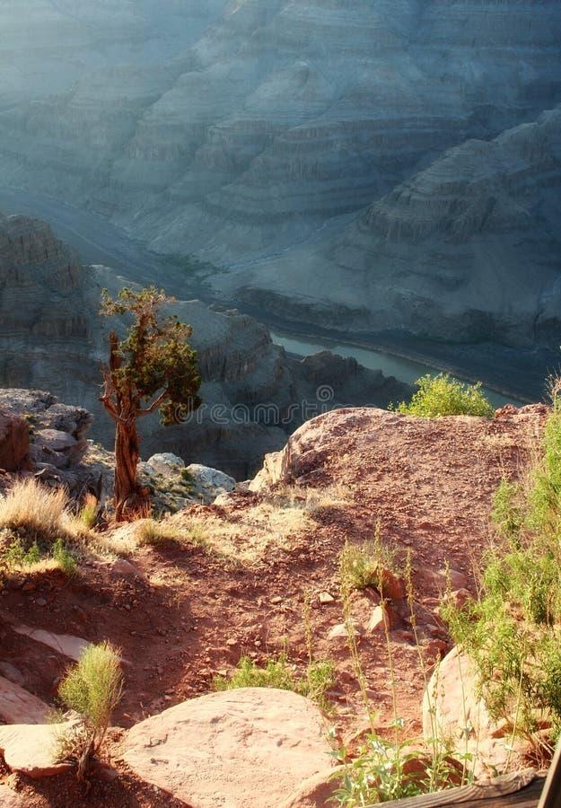 Download Garganta grande imagem de stock. Imagem de geologia, gorge - 26503417