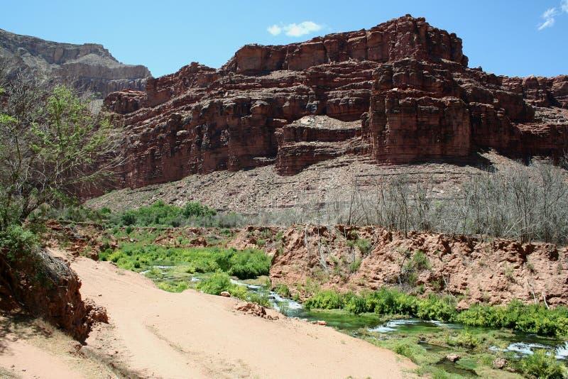 Download Garganta Grande - Havasupai Foto de Stock - Imagem de arizona, parque: 26503450