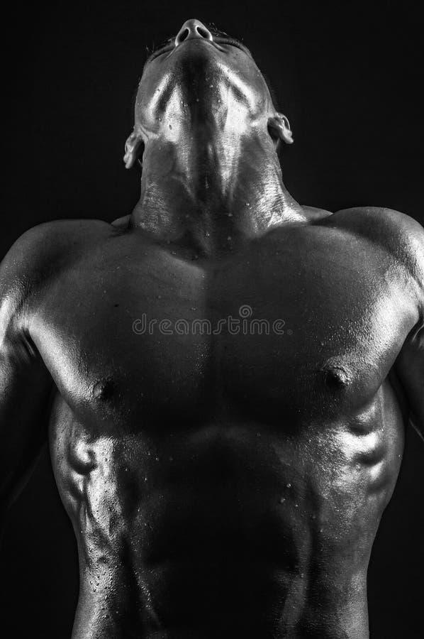 Garganta masculina imagens de stock