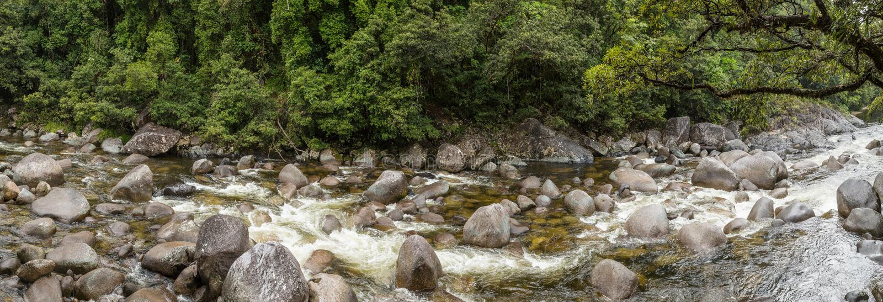 Garganta n de Mossman la selva tropical de Daintree, Queensland Australia imagen de archivo libre de regalías