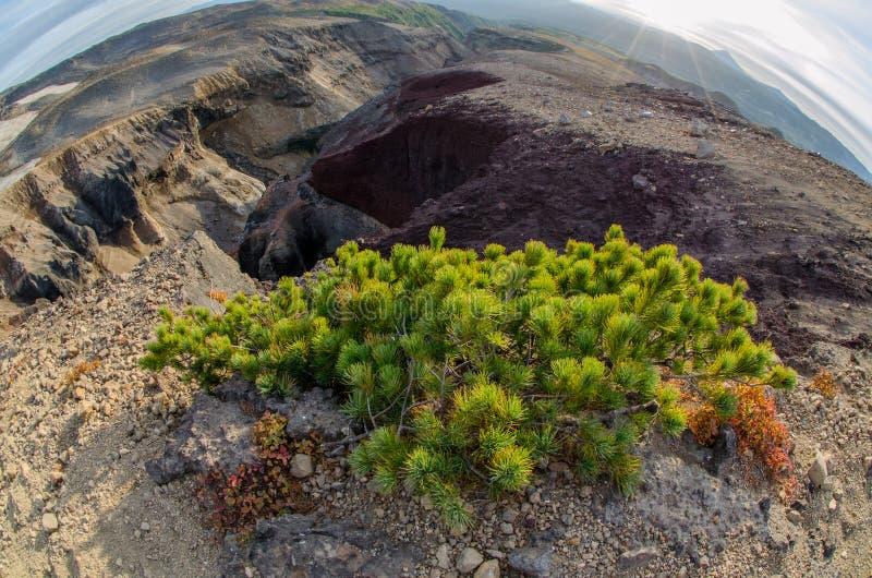 Garganta Opasny perto do vulcão de Mutnovsky imagens de stock