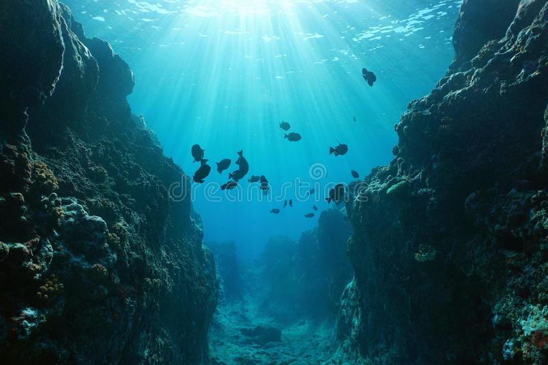 Garganta subaquática com Oceano Pacífico da luz solar foto de stock royalty free