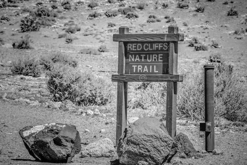 Garganta vermelha da rocha em Calif?rnia - MOJAVE CA, EUA - 29 DE MAR?O DE 2019 foto de stock royalty free