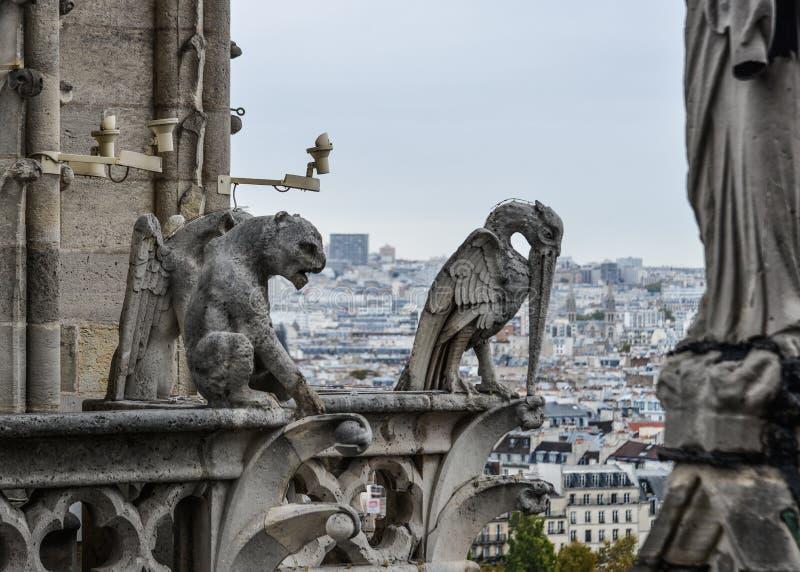 Gargouille de chimère de Notre Dame de Paris photos libres de droits