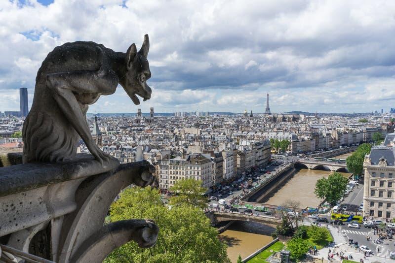 Gargouille in Notre Dame in Parijs royalty-vrije stock foto's