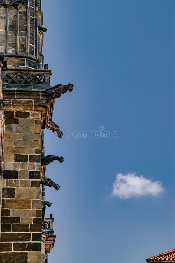 Gargouilles die uit de kant van St Vitus Cathedral plakken royalty-vrije stock foto