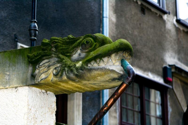 Gargoyle in Gdansk. Medieval gargoyle in Gdansk, Poland royalty free stock image