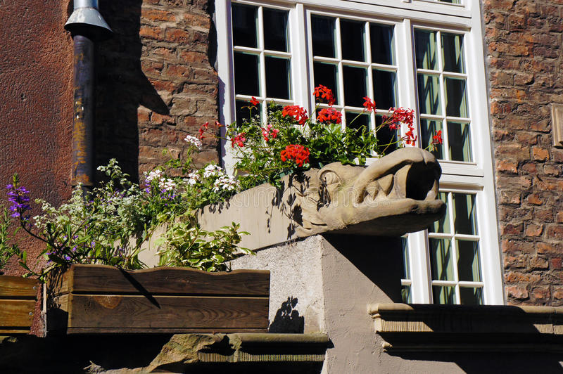 Gargoyle on Mariacka Street in Gdansk. Old gargoyle turned into flower pot in old city of Gdansk, Poland stock images