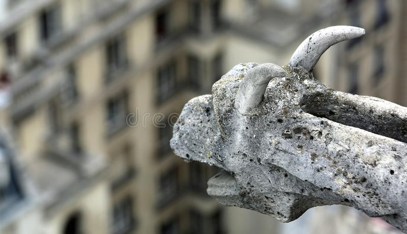 Gargoyle of Notre Dame de Paris in France. Ancient gargoyle of Notre Dame de Paris in France royalty free stock image