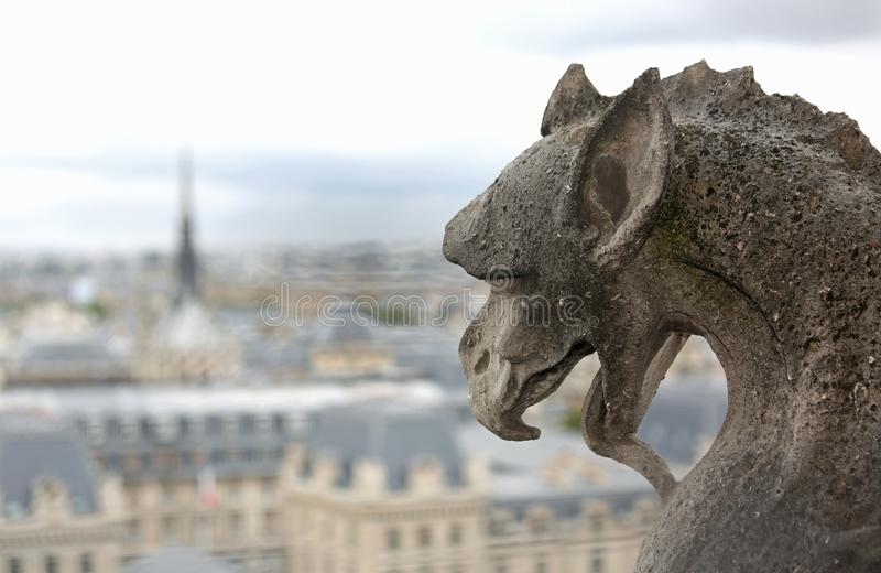 Gargoyle shows the language in the church of Notre Dame. A Parigi in Francia stock images