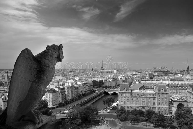 Gargoylein the Notre Dame Paris cathedral, with the Eifel tower in the background, black and white. stock photos