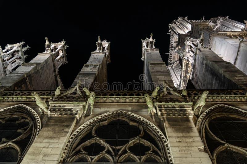 Gargoyles του καθεδρικού ναού της Notre Dame, Παρίσι, Γαλλία Ορόσημο τουριστών Άποψη νύχτας στοκ εικόνες