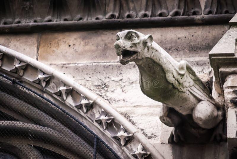 Gargoyles-Detal καθεδρικός ναός OD Notre Dame στοκ εικόνα με δικαίωμα ελεύθερης χρήσης