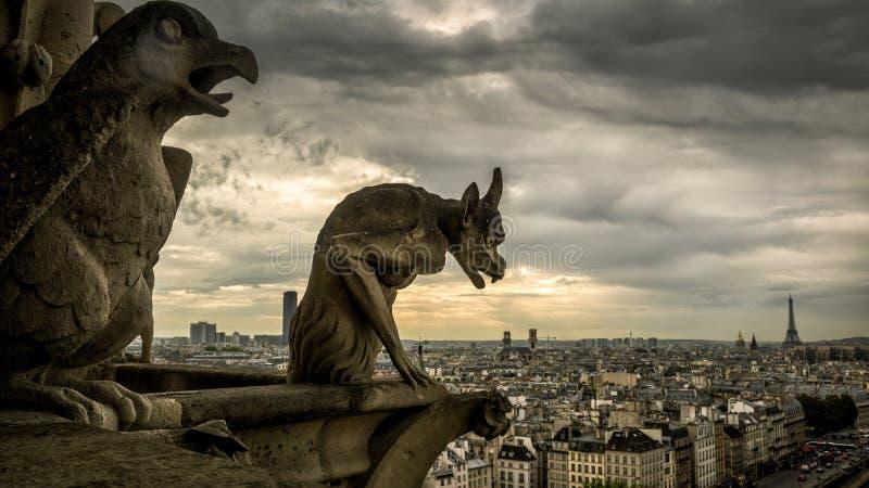 Gargulece na katedrze przegapia Pa notre dame de paris obraz royalty free