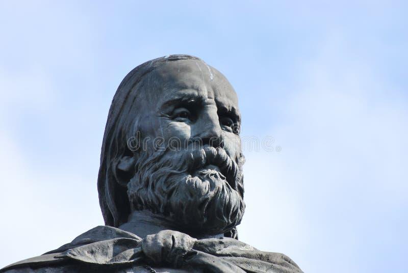 Garibaldi Face royalty-vrije stock afbeeldingen