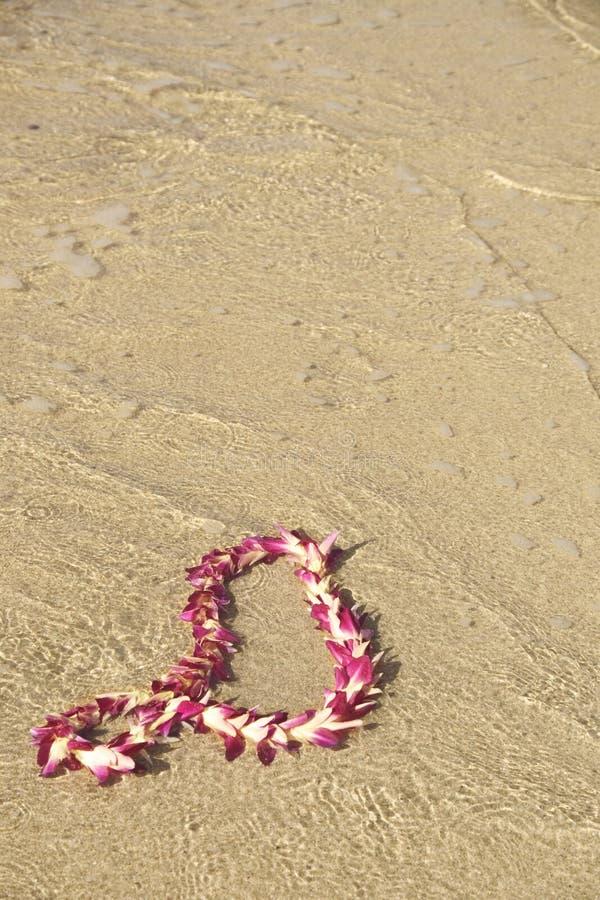 Download Garland of flowers stock image. Image of caribbean, spirit - 338825