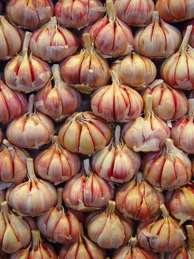 garlic стоковые изображения