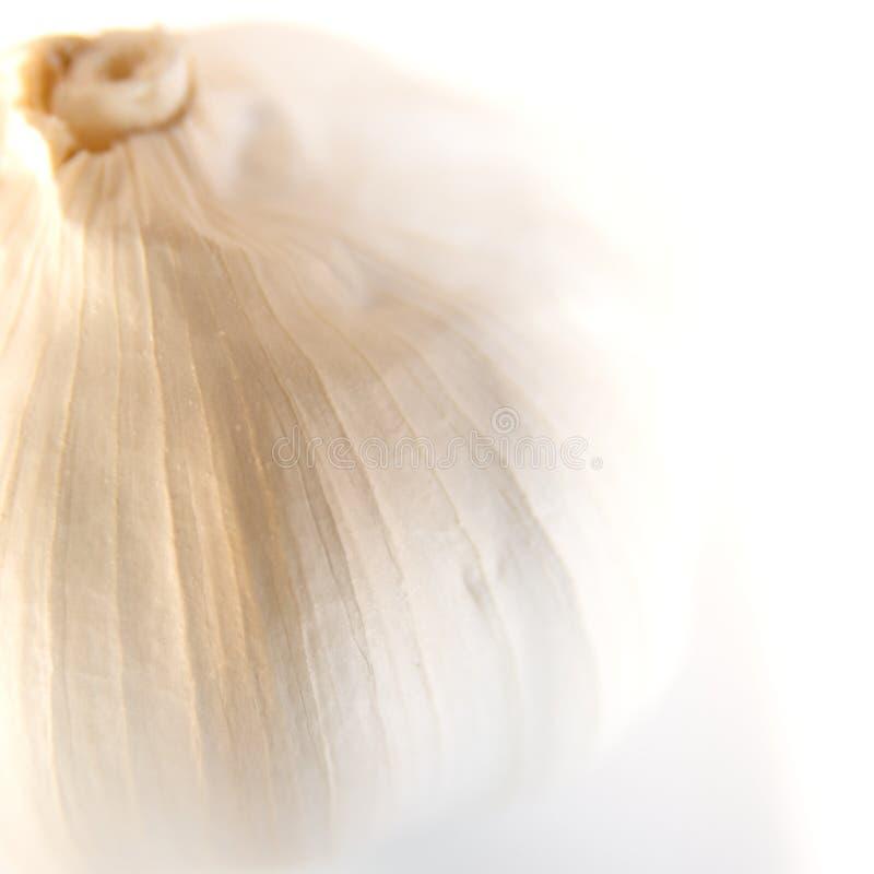 Free Garlic Stock Photo - 13687790