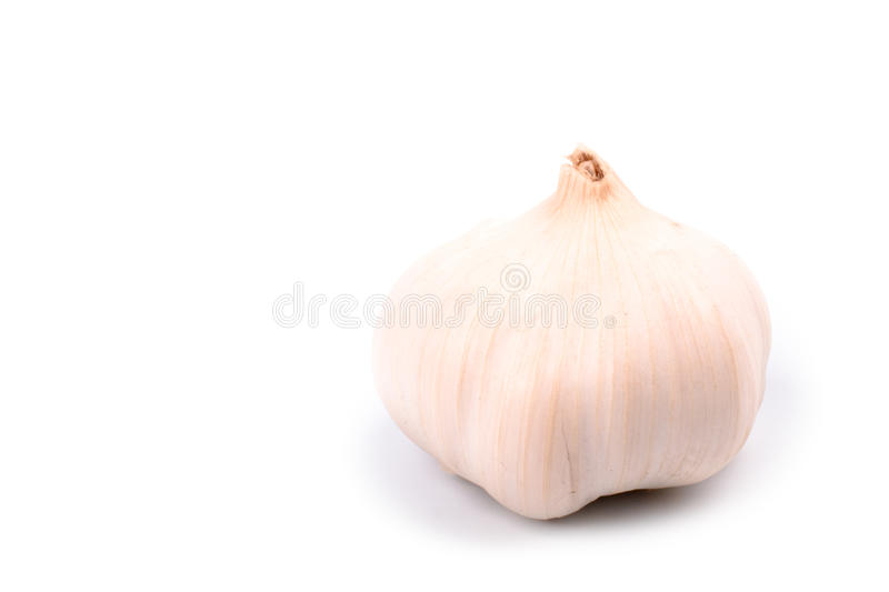 Garlic. Single garlic isolated on white background stock photos