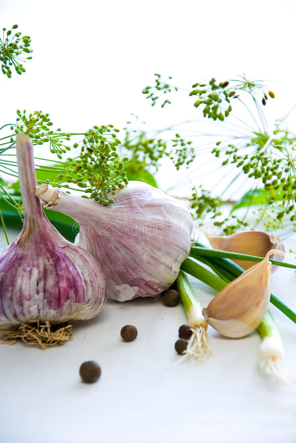 Free Garlic Stock Photos - 15563873