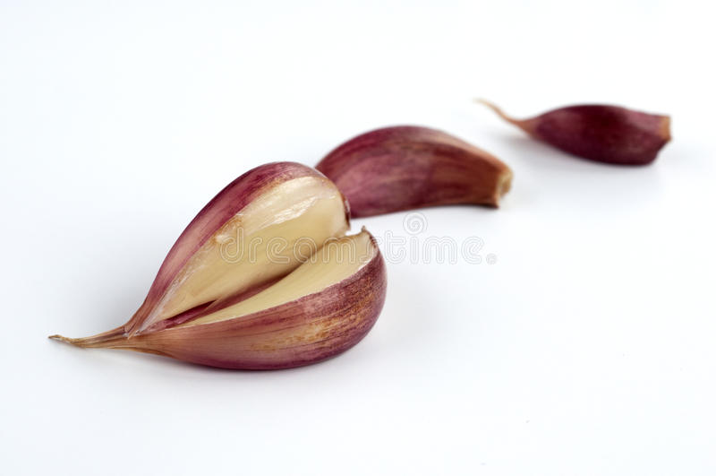 Garlic. On a white background royalty free stock photo
