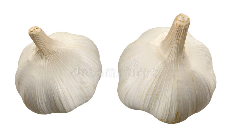 Garlic. Two Garlics isolated on a white background. Isolation is on a transparent layer in the PNG format stock images