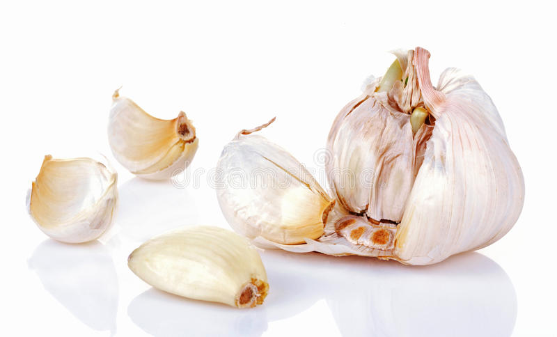 Garlic. Isolated on white background royalty free stock images