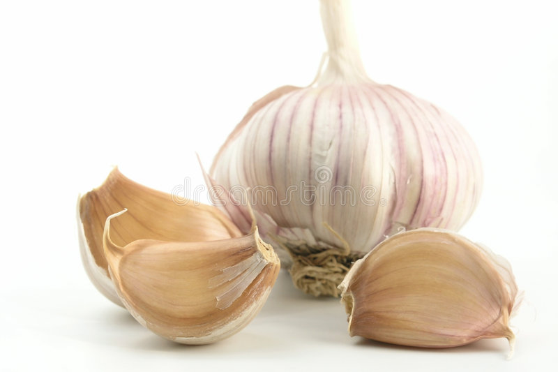 Download Garlic stock photo. Image of green, background, nutritious - 222086
