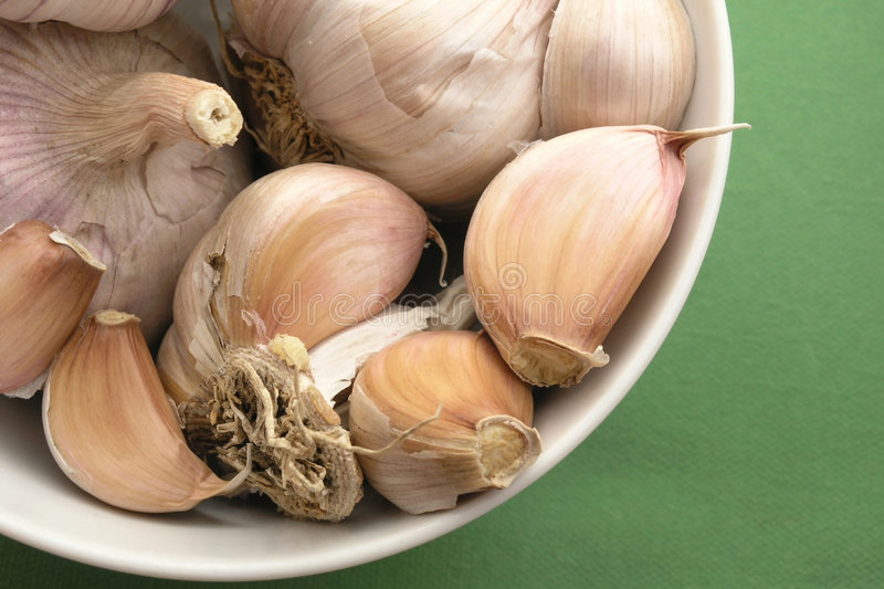 Download Garlic stock image. Image of bulb, garlic, fresh, nature - 225365
