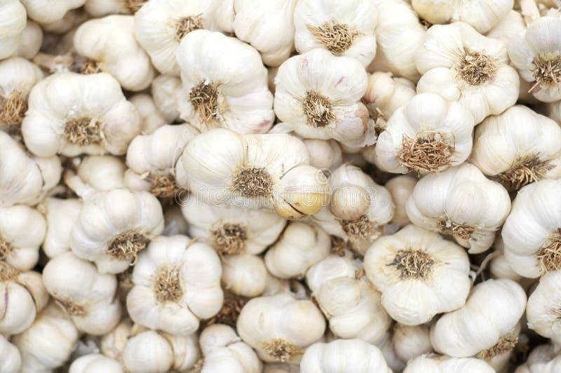 Download Garlic stock photo. Image of garlic, natural, market - 24898894