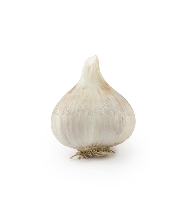 Download Garlic stock photo. Image of healthy, ingredient, family - 26395216
