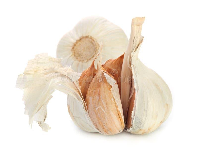 Download Garlic stock photo. Image of full, clean, image, garlic - 26936904