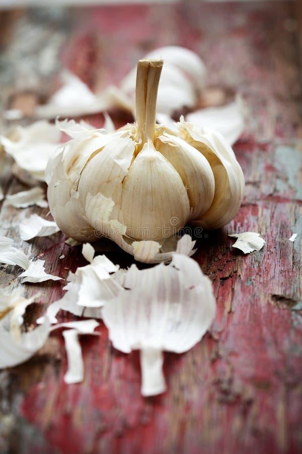 Download Garlic stock image. Image of bulb, chop, nobody, kitchen - 28884731