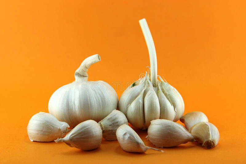 Download Garlic Royalty Free Stock Photo - Image: 29054835