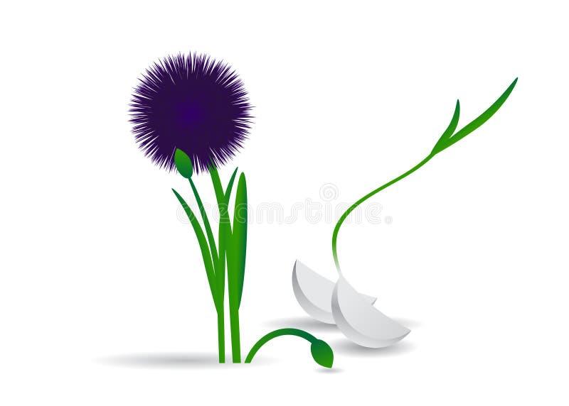 garlic ilustração stock