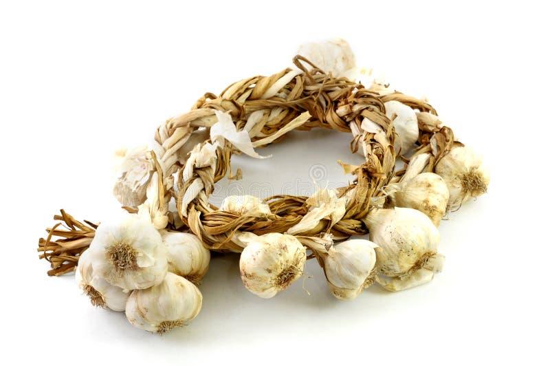 Garlic stock photos